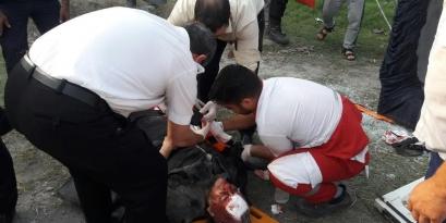 19 مصدوم در حادثه واژگونی مینی بوس بندرگز + تصاویر